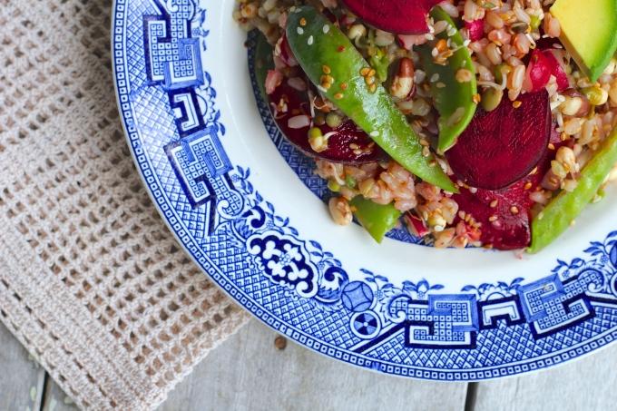 miso-sprouts-brown-rice-salad-closeup