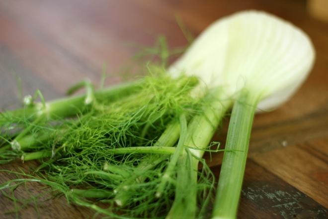 autumn-pasta-salad-fennel