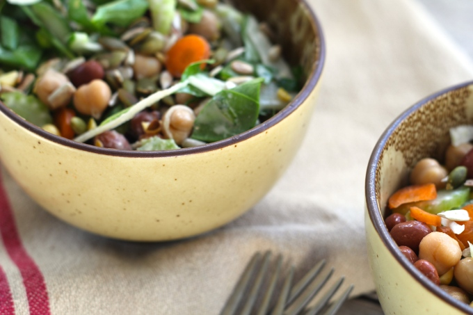 bean-fennel-salad-bowls