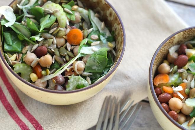 bean-fennel-salad-two-bowls