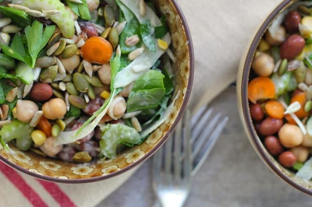 bean-fennel-salad