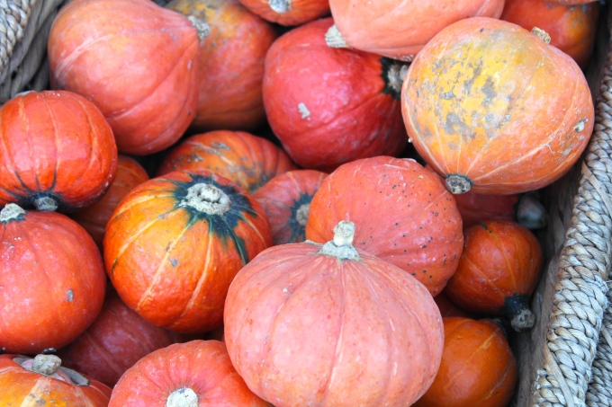 sydney-pumpkins