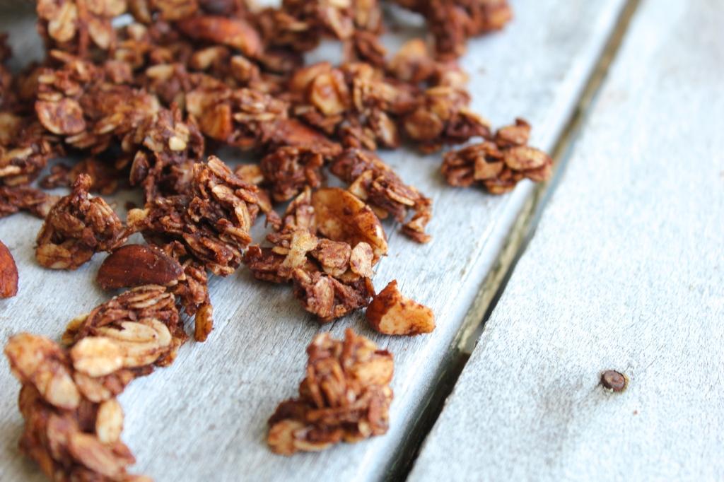 coconut-cacao-granola-birdseye