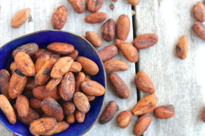 cashew-cacao-bean-smoothie-cacao-beans