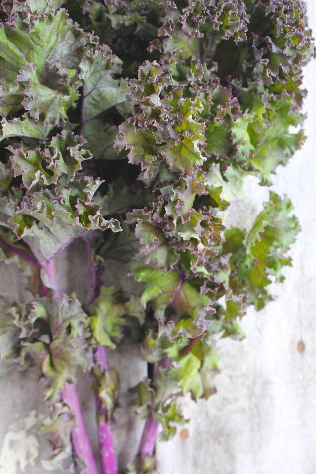 autumn-salad-kale-leaves