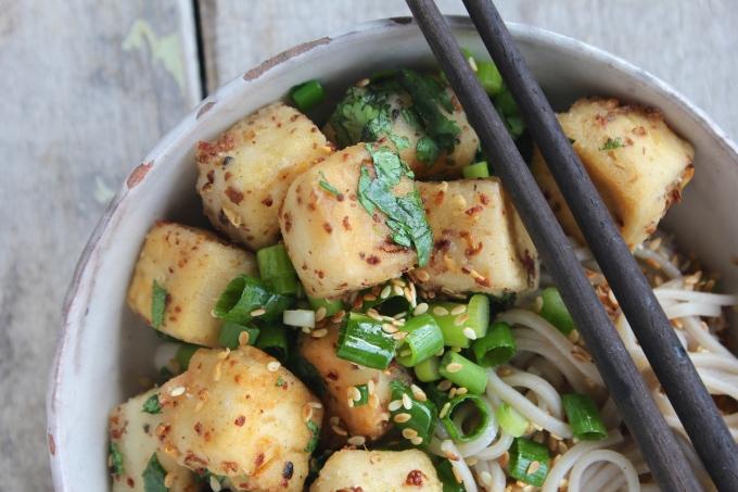 szechuan-tofu-closeup