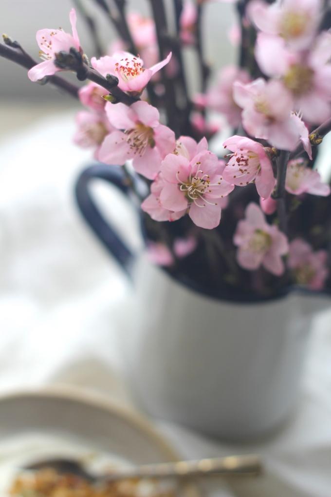oat-milk-granola-flowers