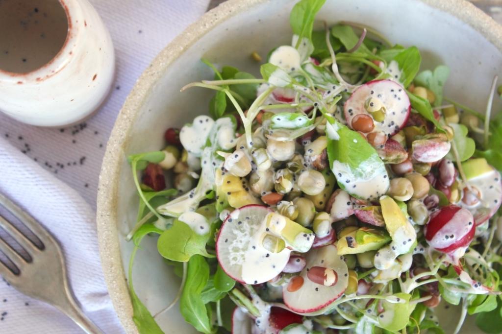 sprout-salad-closeup
