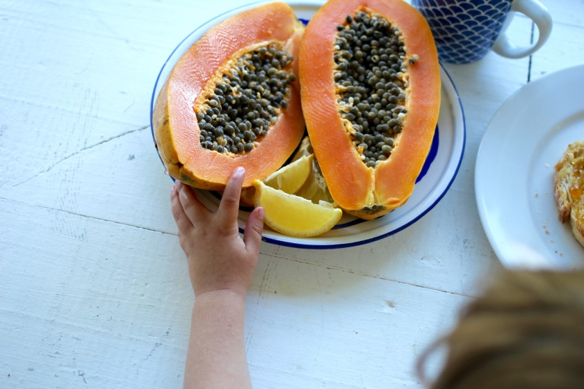 stradbroke-island-papaya