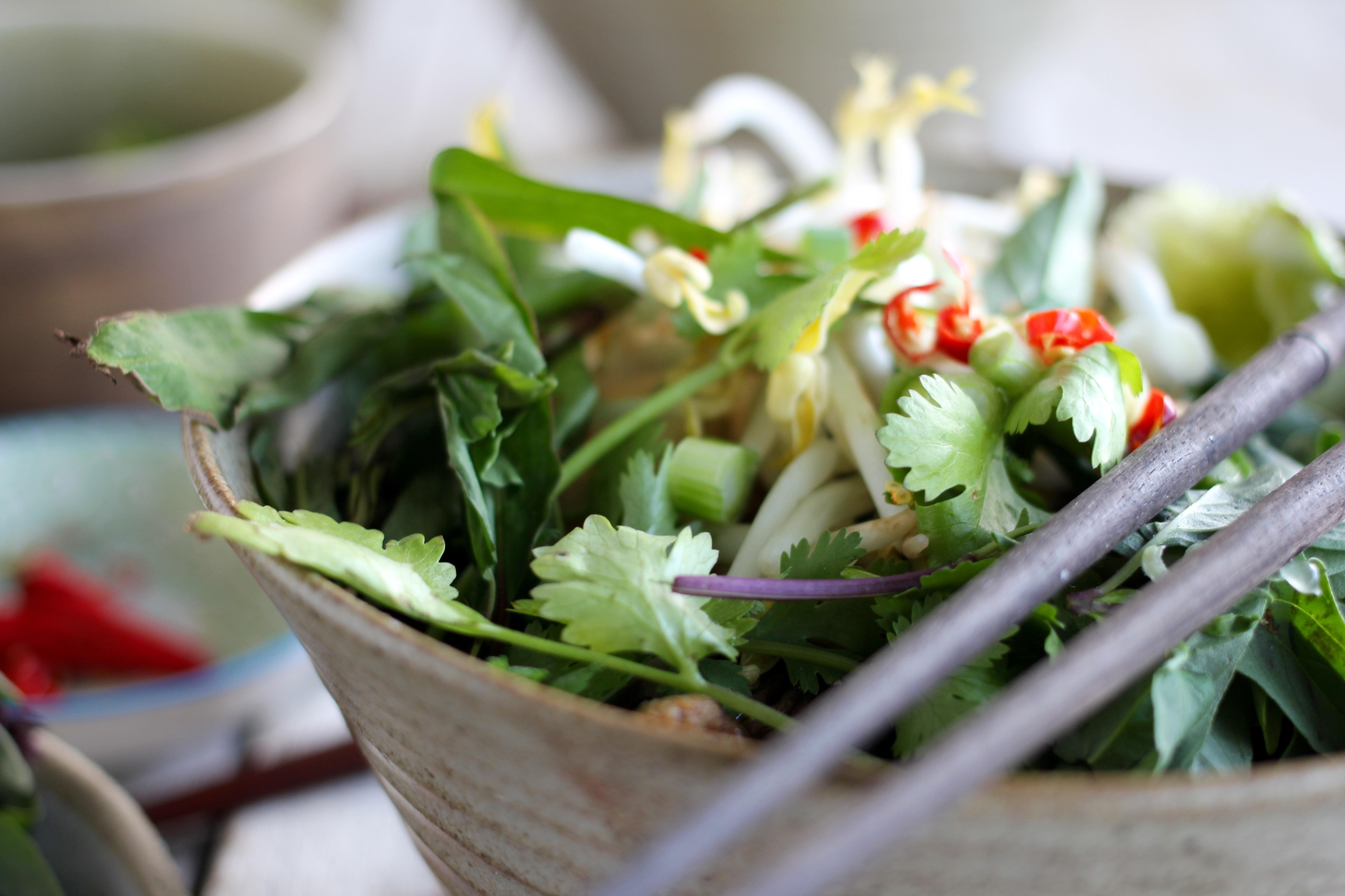 Vegetarian Pho + Comfort Food