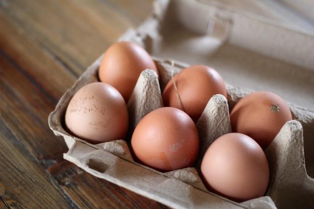 rice-egg-bowl-one