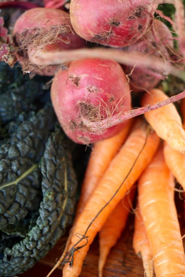 winter-coleslaw-one